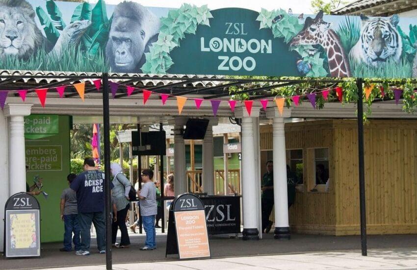 London-Zoo-tickets