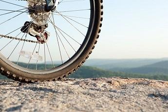 Wiggle Bike Parts