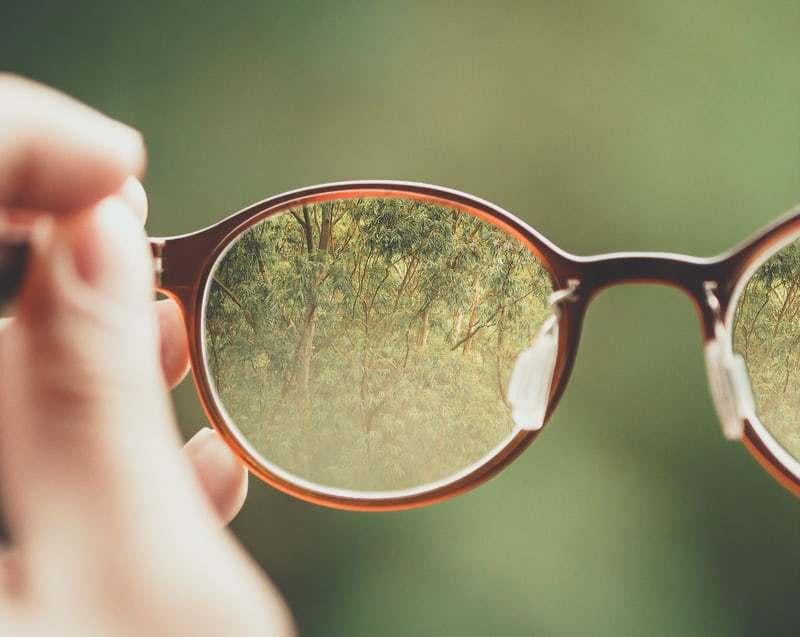 Glasses Direct Specs