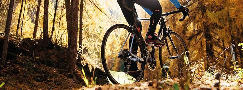 Merlin-Cycles-Bikes