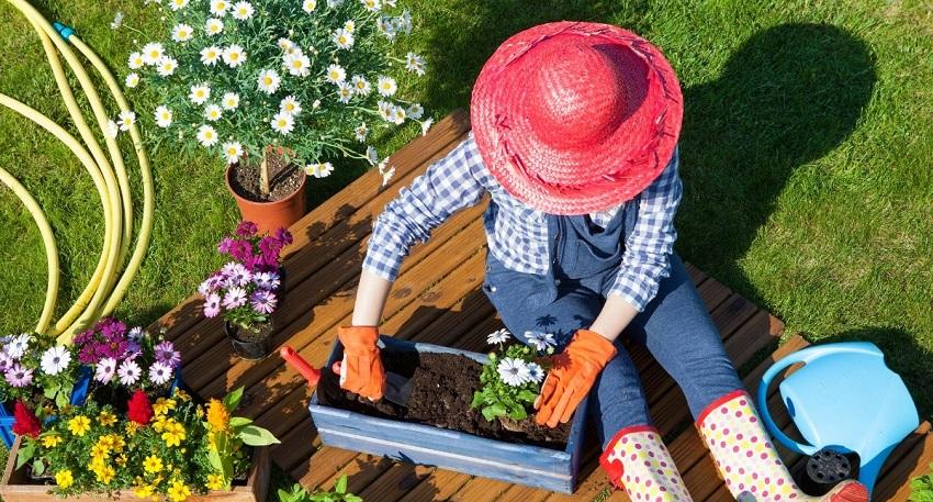Gardening Direct Gardening Accessories